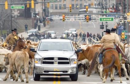CHRYSLER je u prezentaciji angažirao kauboje s krdom krava