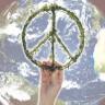50 godina simbola mira