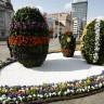 Jelačić plac - Pisanice od cvijeća i lišća