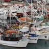 Ribari ogorčeni kolebanjem Vlade