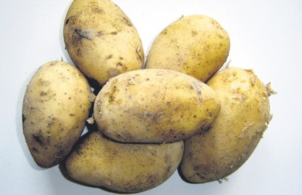 Slovenski mediji objavili su da će Slovenci prvi u svijetu podići spomenik u čast krumpiru, no Međimurci su ih preduhitrili