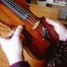 Prodana violina