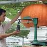 Kina: Počelo masovno slanje sjemenki u svemir