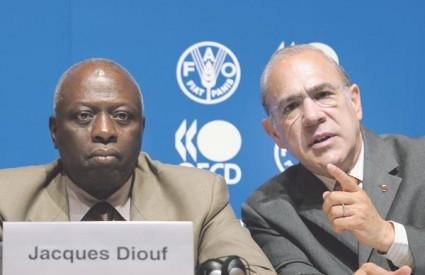Jacques Diouf i Angel Gurria u razgovoru s novinarima