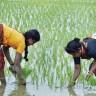 Indija je zemlja gladnih
