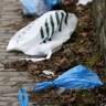 Peticija za zabranu plastičnih vrećica