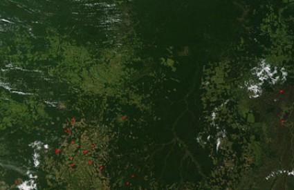 Deforstacija je ogroman ekološki problem jer šume su
