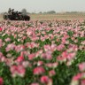 Afganistanci i SAD započeli pregovore s talibanima