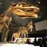 Dinosauri su umirali - dva puta