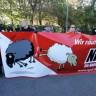 Parlamentarni 'neonacisti' svađaju se na rubu bankrota