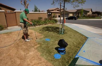 Kako riješiti problem zapuštenih travnjaka? Obojite ih