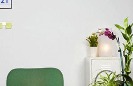 Neka vam biljke pročiste zrak