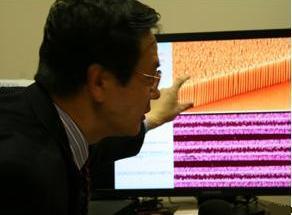 Prof. Wang pokazuje povećani prikaz nanožica cinkovog oksida koje su manje od širine vlasi kose (CNN)