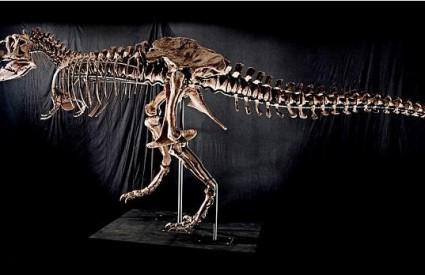 T-Rex je dobivao po pet kila dnevno