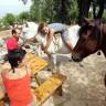 Hvar razvija seoski turizam