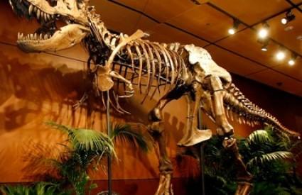 Dinosauri su možda ipak bili sličniji sisavcima nego reptilima