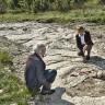 Otkriveni ostaci nepoznate vrste dinosaura