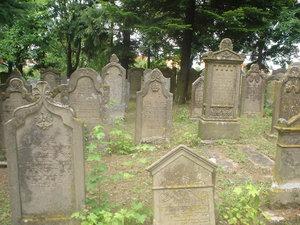 Kako se Mujo proveo na groblju