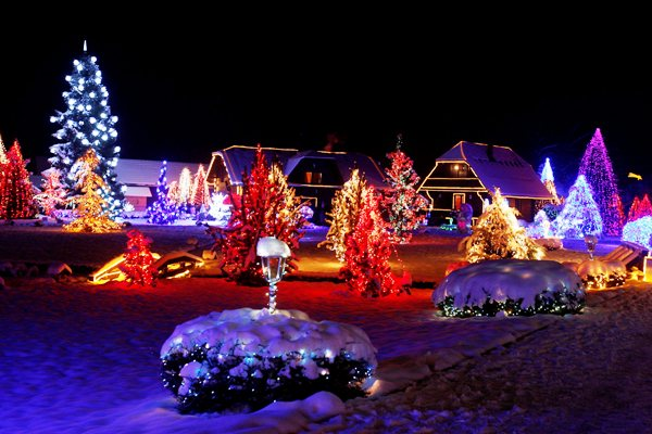 I ove godine zasjala Božićna priča obitelji Salaj Bozicna_prica_salaj_3