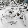 Snijeg zameo Peking