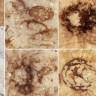 U Kini otkriven pauk star 165 milijuna godina