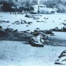 Južna Afrika obilježava 50. obljetnicu masakra u Sharpvilleu