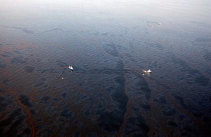 Naftna mrlja Meksički zaljev