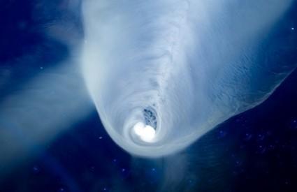 Voda koja danas postoji na Zemlji potječe od asteroida
