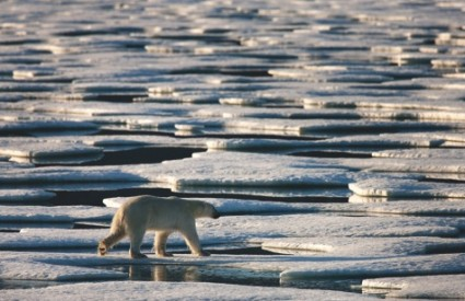 Led se nezaustavljivo topi