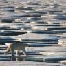 Led na Arktiku najmanji u zimskom razdoblju u zadnjih 38 god