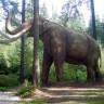 Mamuti bi za četiri godine mogli opet hodati Zemljom