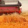 Stupio na snagu embargo na izvoz ruske pšenice
