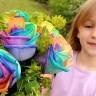 Poklonite joj ruže u duginim bojama