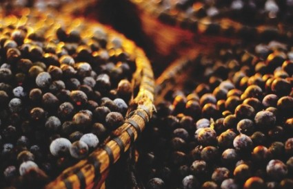 Acai bobice su sjajan antioksidans