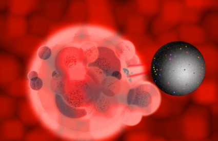 Nanoboti će ubijati stanice raka