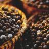 Acai bobice - puno zdravlja u malom pakiranju