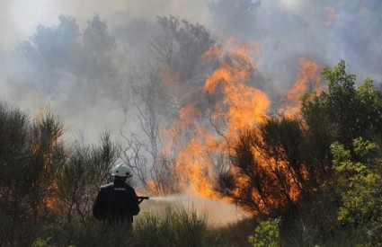 Požar u zaleđu Vodica