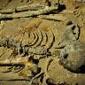 Kostur muškarca pronađen na Krku tamo leži najmanje deset godina