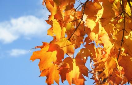 Prvi dan jeseni nosi sa sobom i neke mitove...