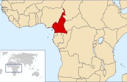 Kamerun: Otmičari hrvatskog pomorca traže puštanje svojih boraca