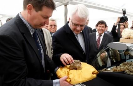 Ivo Josipović na 17. Tuber festu