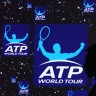 Karlović se popeo, a Čilić srozao na ATP ljestvici