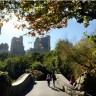 Central Park - zelena oaza u smogu New Yorka