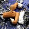 Trudnice koje puše rađaju male kriminalce?