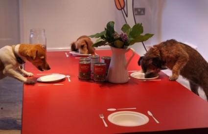 Restoran za pse