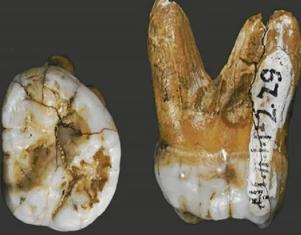 Nakon Sibira, Denisovanci pronađeni i u Kini