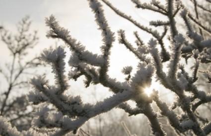 Biometeorološka prognoza od 4. do 7. prosinca