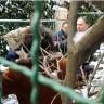HHO zaključio da su Mirjani Sanader ugrožena ljudska prava