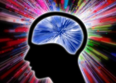 Budnost Mozak_free