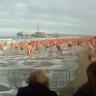 Najhrabriji se odvažili na kupanje u Sjevernom moru